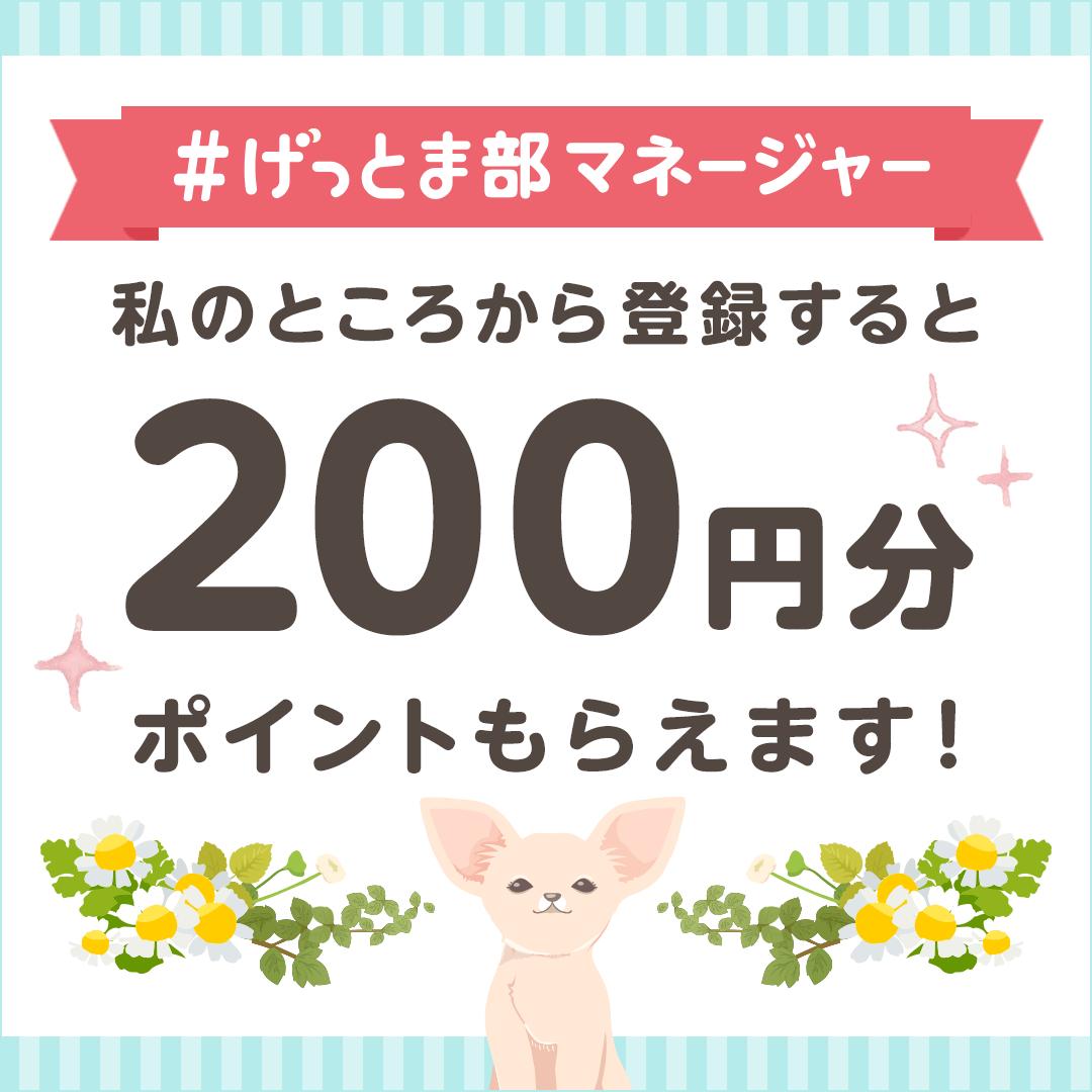 #げっとま部マネージャー 私のところからげっとまに登録すると200円分ポイントプレゼント!