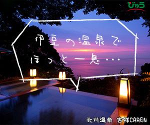 【えきねっと】びゅう国内ツアー