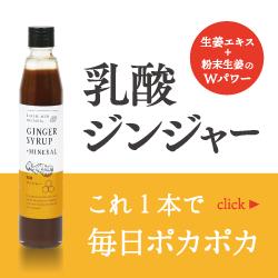 乳酸ジンジャー 100円サンプルセット