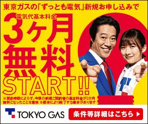 【東京ガス】基本プラン ずっともでんき
